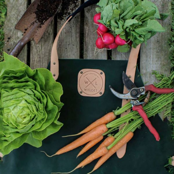 Green apron on a table with radish, carrots and a lettuce